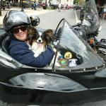 Peanut highly recommends taking a sidecar ride with your four-legged friend. The wind in his face made him one happy pup!